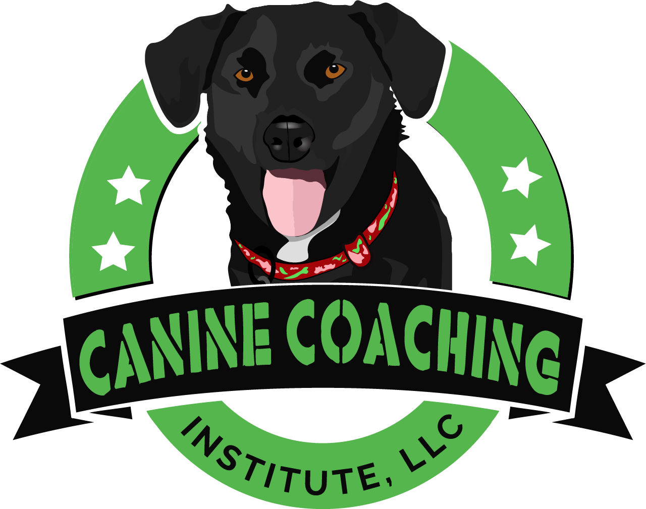 Canine Coaching Advice